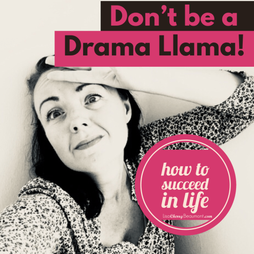 drama llama, how to succeed