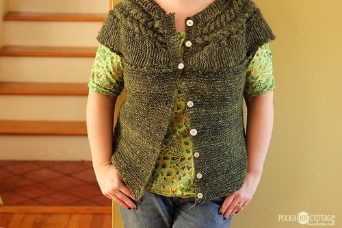 49/365: Feb 18 - Finally finished knitting this vest
