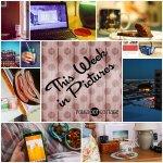 This Week in Pictures, Week 7, 2015