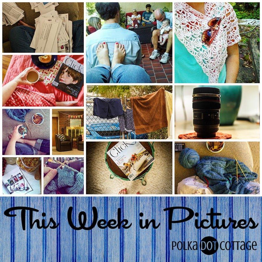 This Week in Pictures, Week 35, 2015