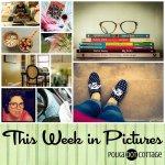 This Week in Pictures, Week 40, 2015