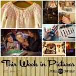 This Week in Pictures, Week 50, 2015