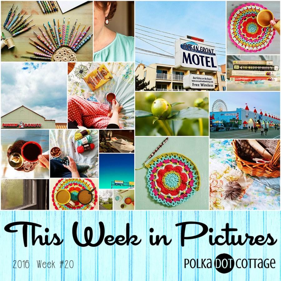 This Week in Pictures, Week 20, 2016
