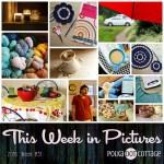 This Week in Pictures, Week 31, 2016