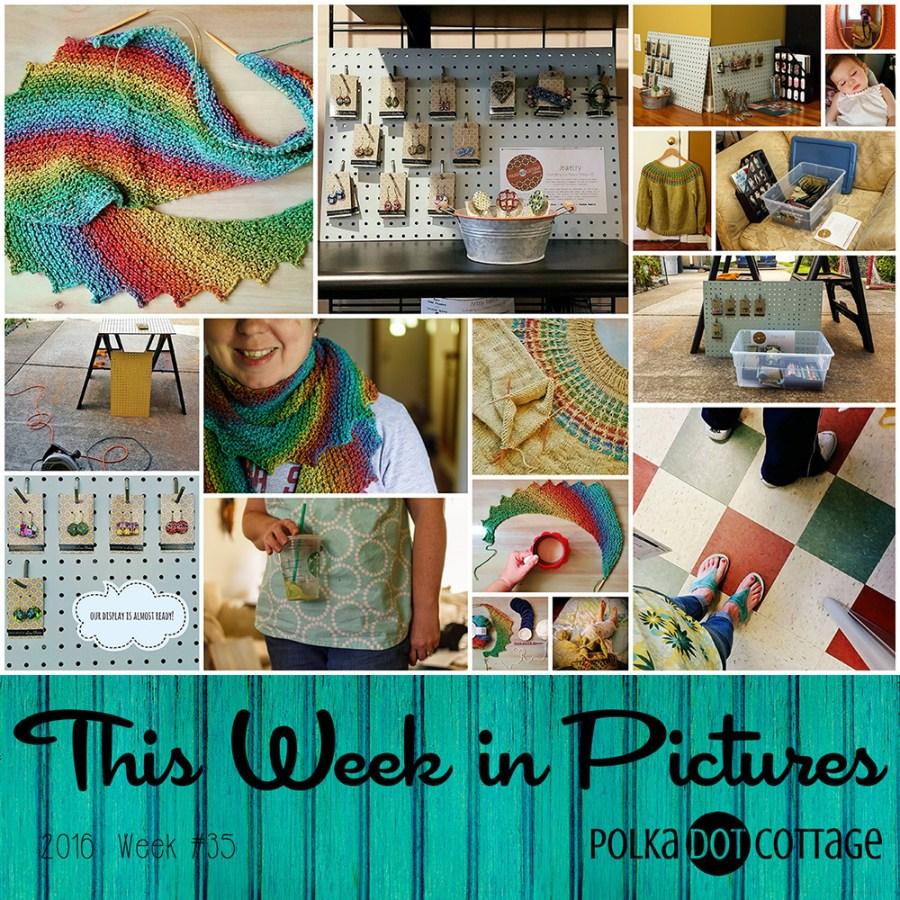 This Week in Pictures, Week 35, 2016