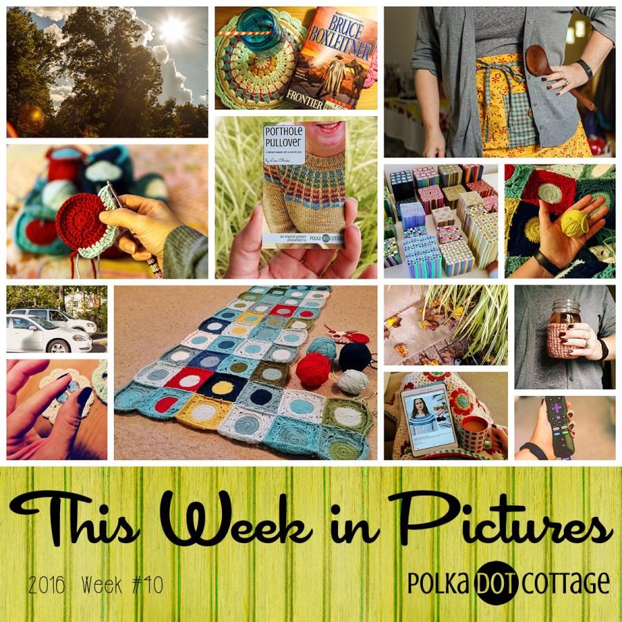 This Week in Pictures, Week 40, 2016