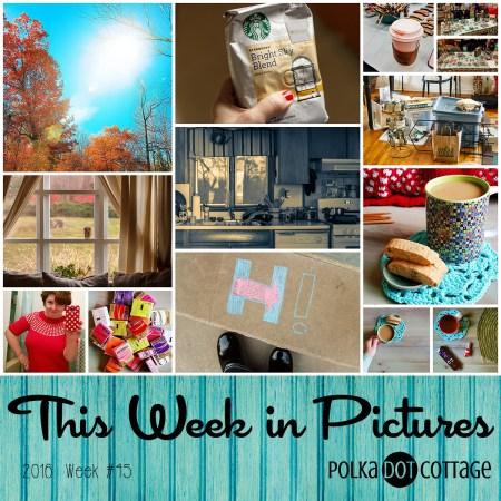 This Week in Pictures, Week 45, 2016