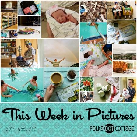 This Week in Pictures, Week 28, 2017