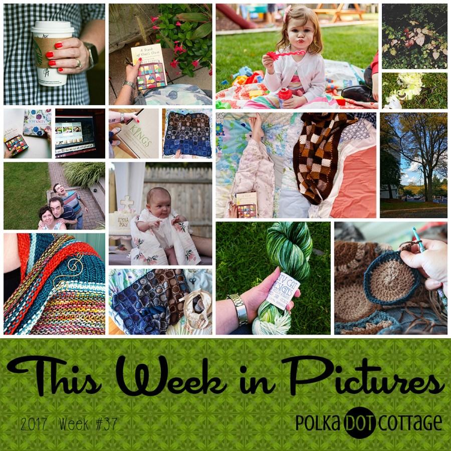 This Week in Pictures, Week 37, 2017