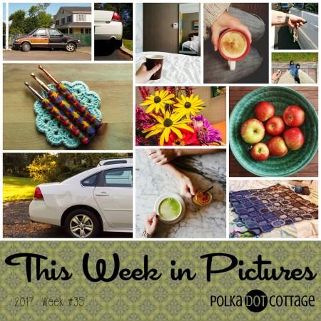 This Week in Pictures, Week 35, 2017