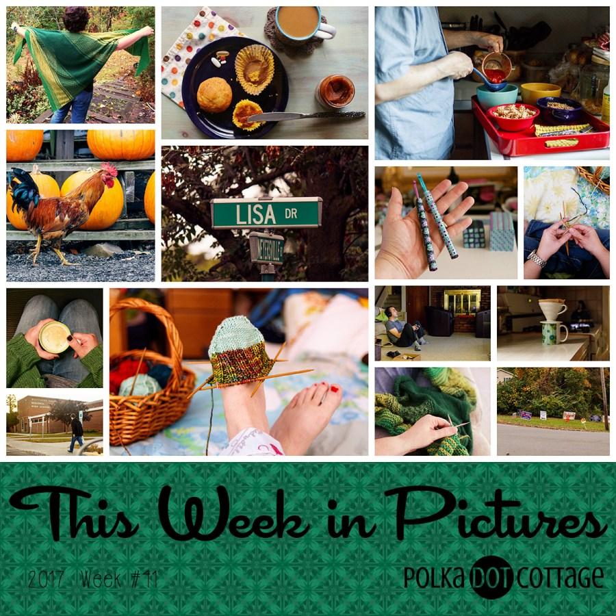 This Week in Pictures, Week 41, 2017
