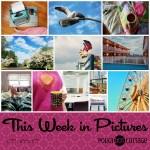 This Week in Pictures, Week 19, 2018