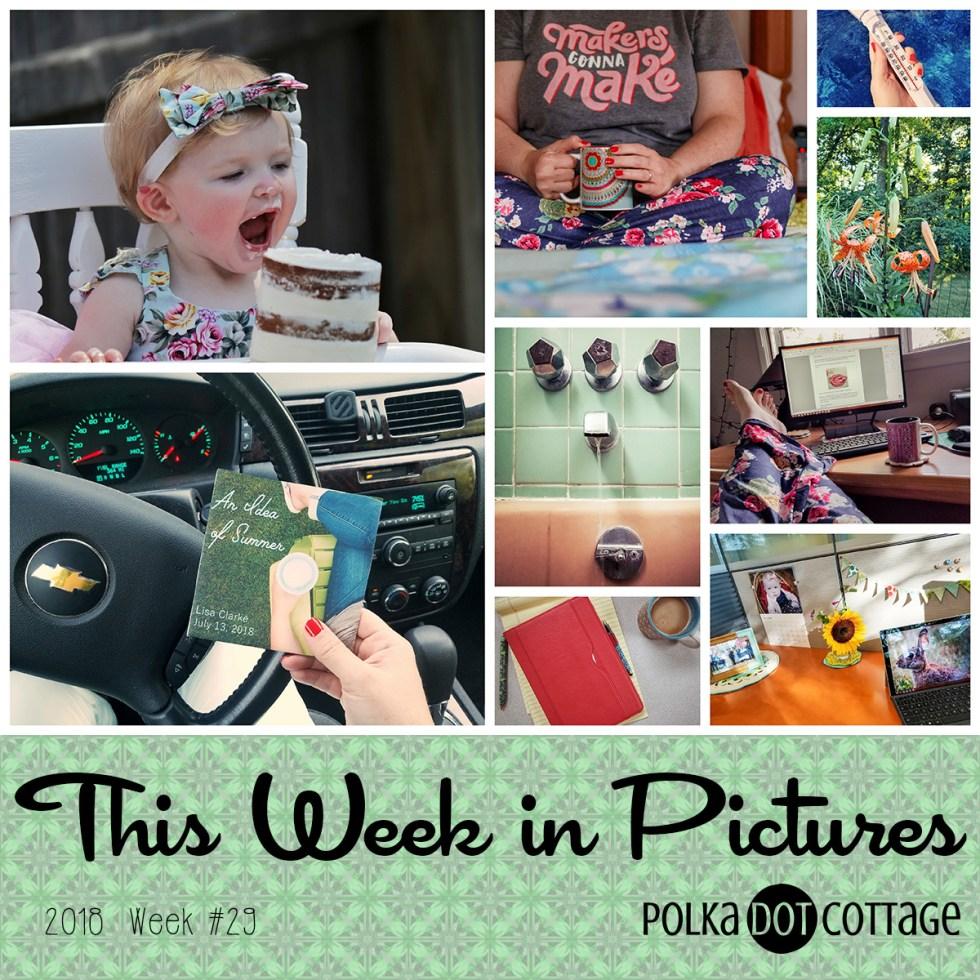 This Week in Pictures, Week 29, 2018