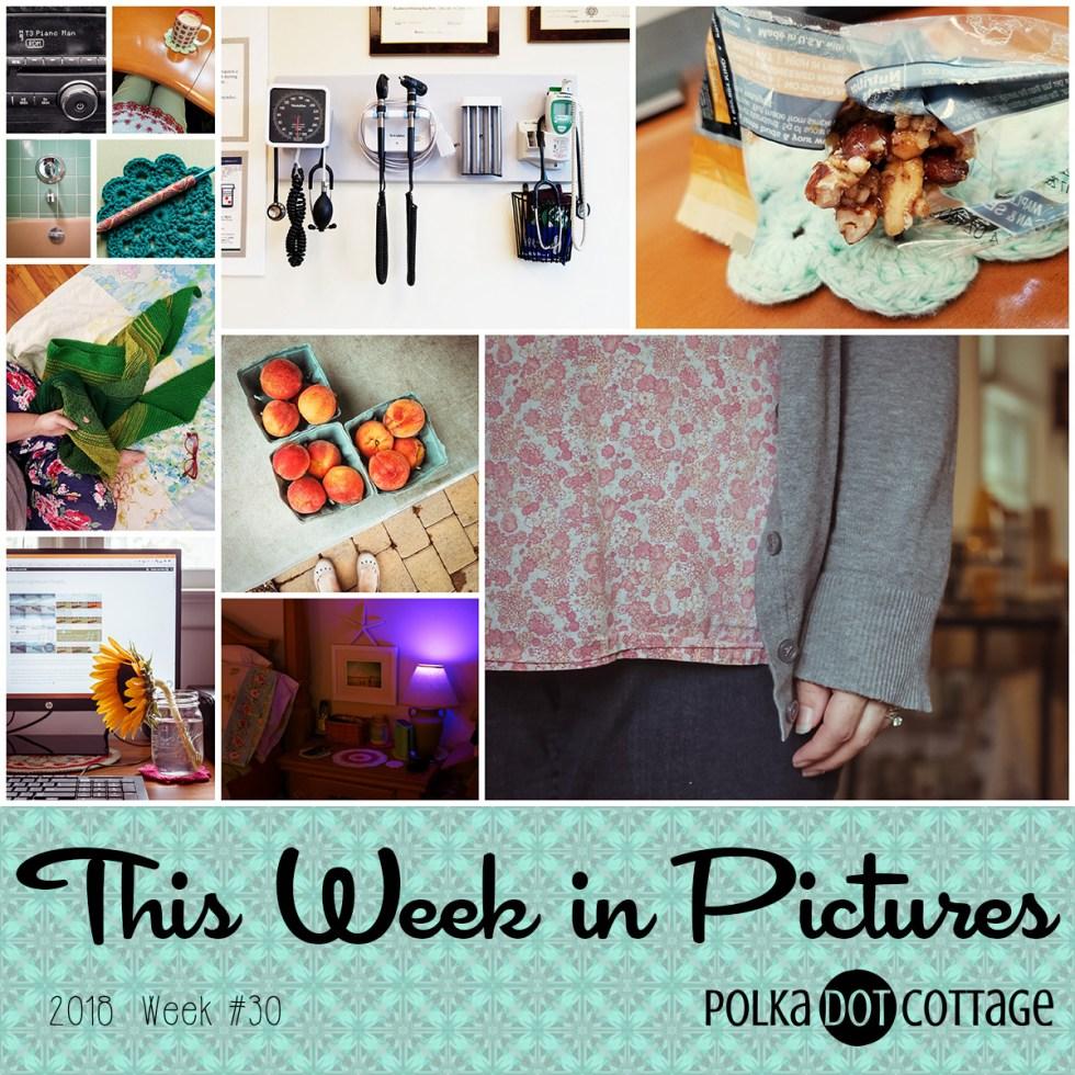 This Week in Pictures, Week 30, 2018
