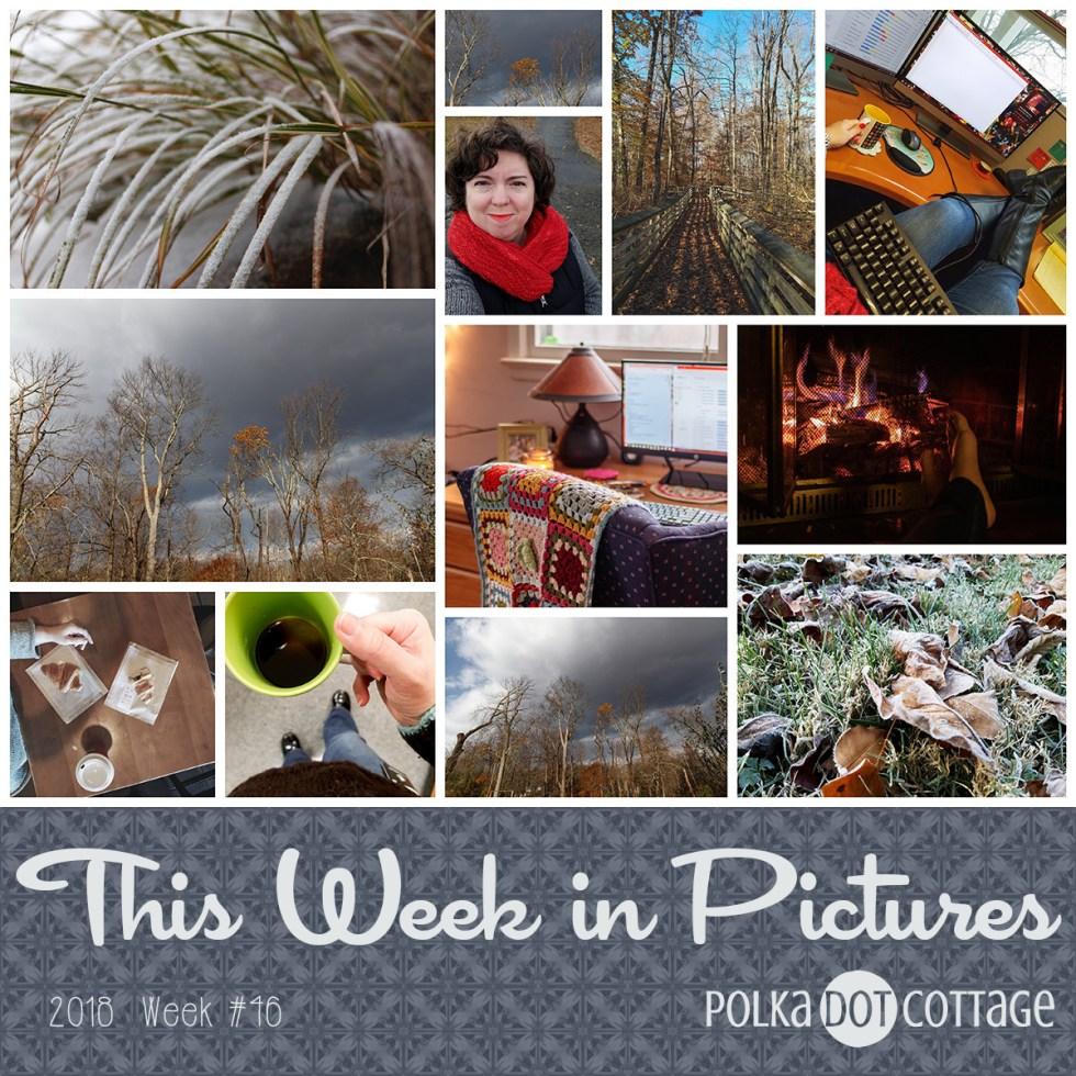 This Week in Pictures, Week 46, 2018