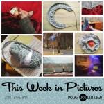 This Week in Pictures, Week 48, 2018