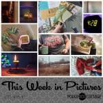 This Week in Pictures, Week 1, 2019