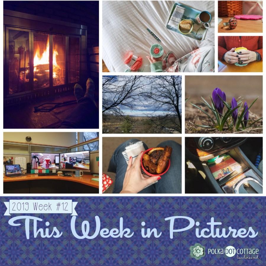This Week in Pictures, Week 12, 2019