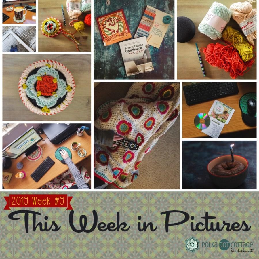 This Week in Pictures, Week 9, 2019