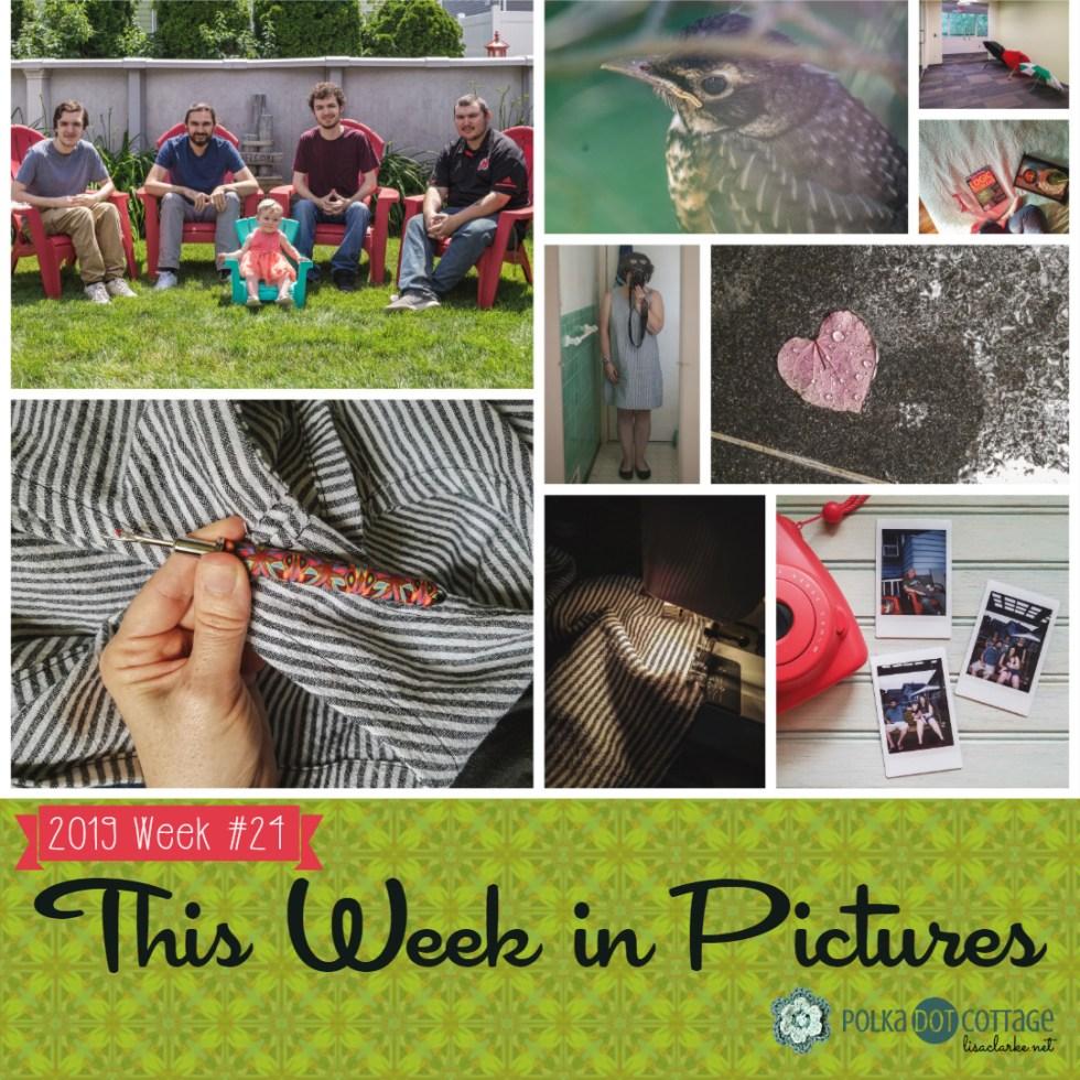 This Week in Pictures, Week 24, 2019