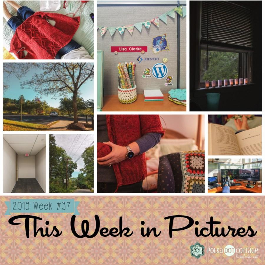 This Week in Pictures, Week 37, 2019
