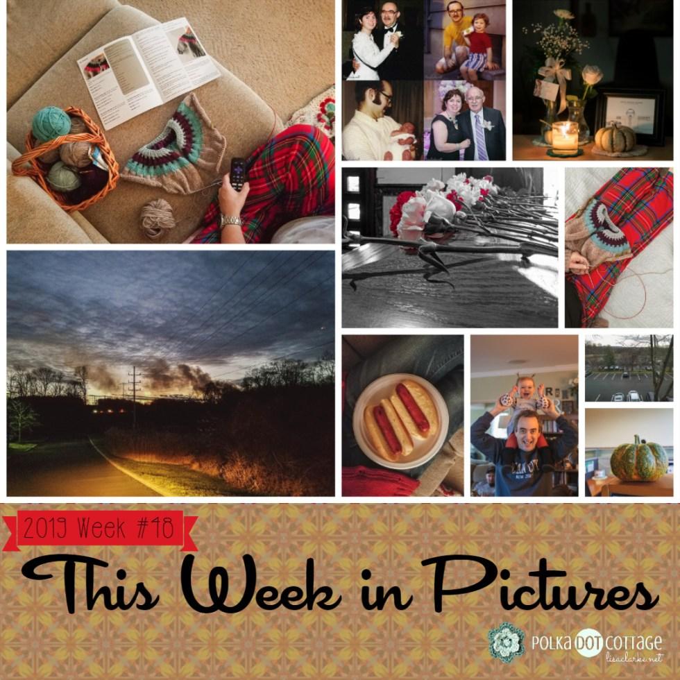 This Week in Pictures, Week 48, 2019