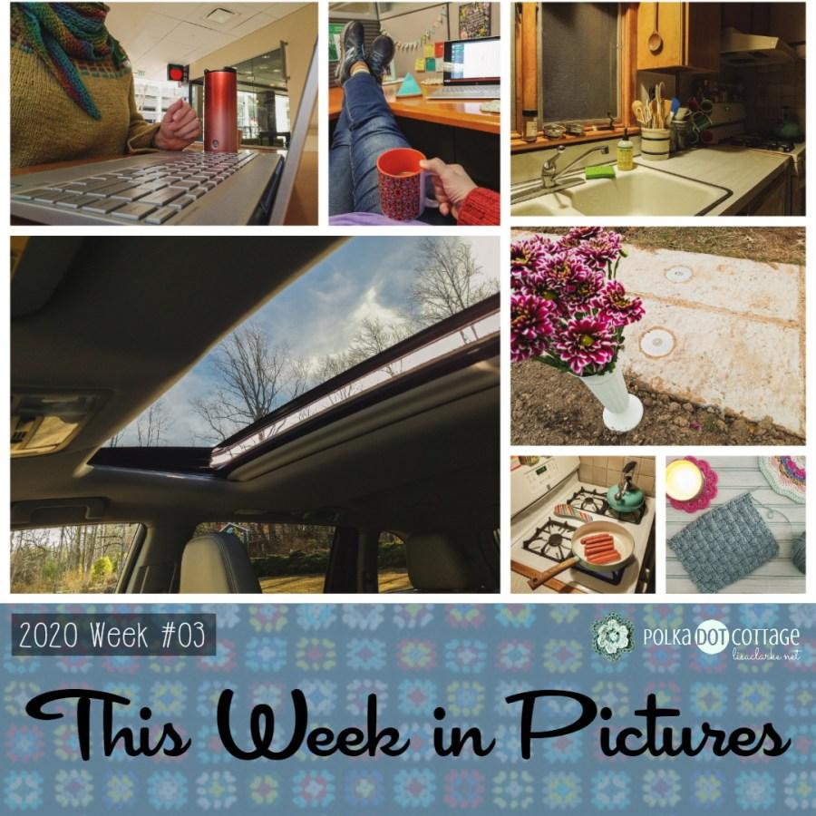This Week in Pictures, Week 3, 2020