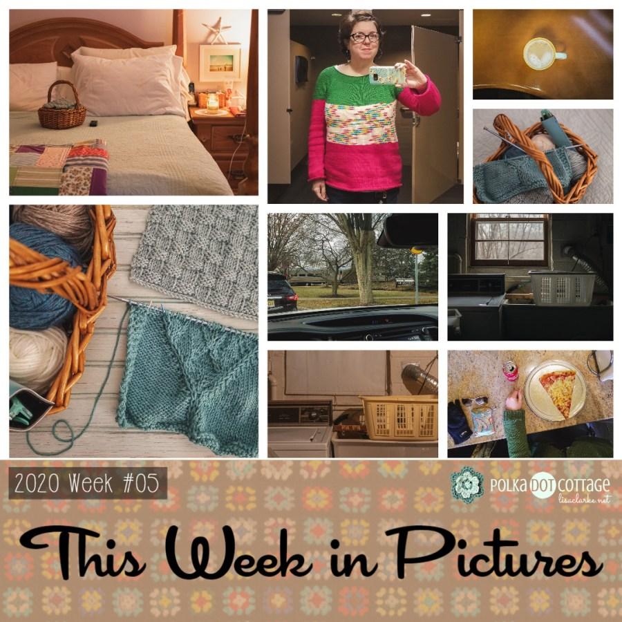 This Week in Pictures, Week 5, 2020