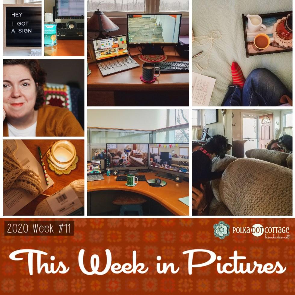 This Week in Pictures, Week 11, 2020
