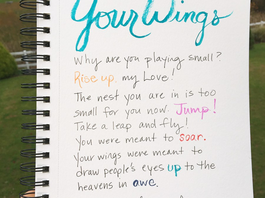 Your Wings: Learning to Rise and Lead