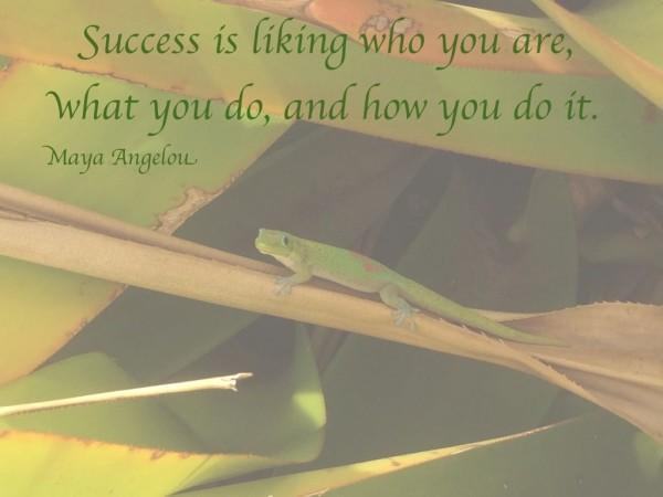 Success quote Maya Angelou lisanalbone.com