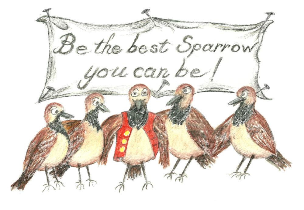 Stanley the Sparrow's Quiet Leadership