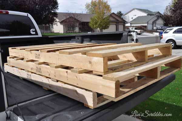 wood-pallet-sheddsc_0431