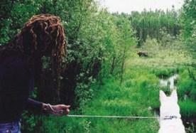 Lisa and Buddy encounter a moose.