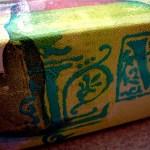 lisa-viger-april-22-2010-11