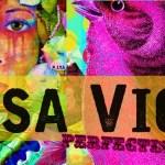 lisa viger ART banner image 1c