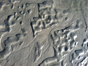 sand patterns photo by Lisa Lindahl