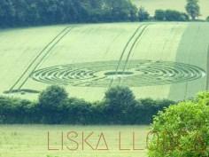 """Crop circrle"" - 2014 - Cellé, France"