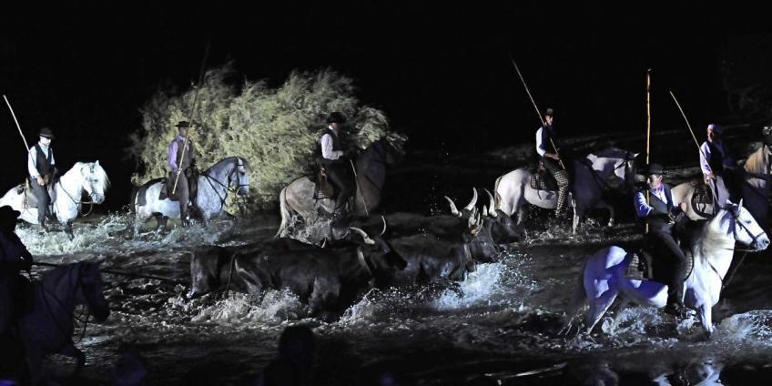 """Spectacle """"Nuit de Songe"""" en Camargue - 2017"""