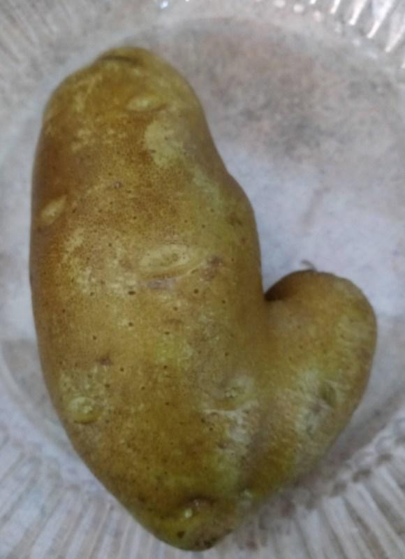 weird potato