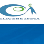 Eligere India WALKIN DRIVE|FRESHERS|0-4 YEARS|DESKTOP SUPPORT ENGINEER|CHENNAI|21ST-30TH APRIL 2016