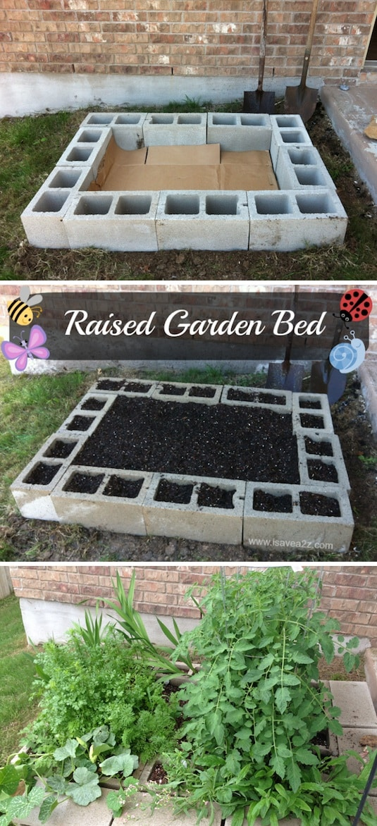 insanely clever gardening tips
