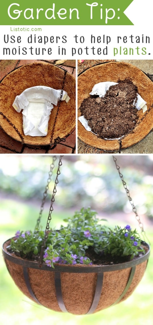 20 Insanely Clever Gardening Tips And Ideas With Pictures!