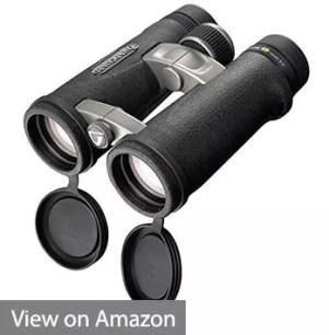 Vanguard 10x42 Binocular