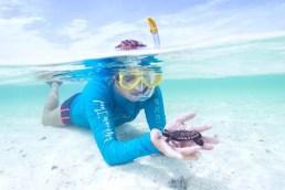 Snorkeling Depth