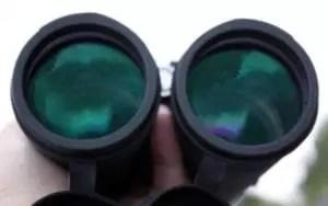 Optical Coating