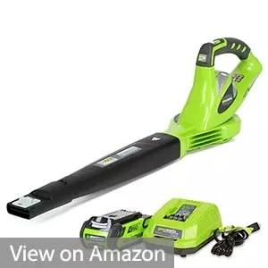 Greenworks 24252 Cordless Blower
