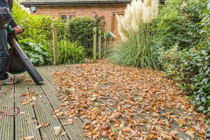 The Basics of Using a Leaf Blower