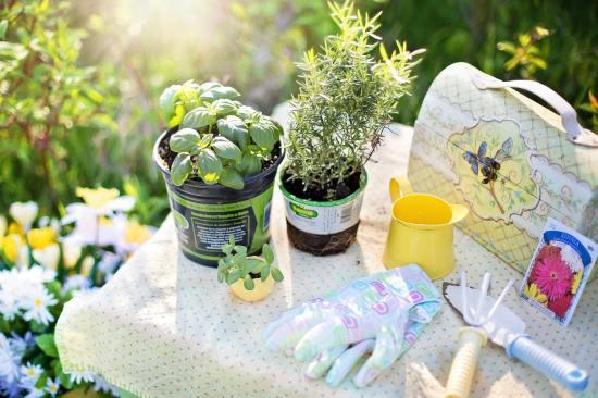 chemical free gardening