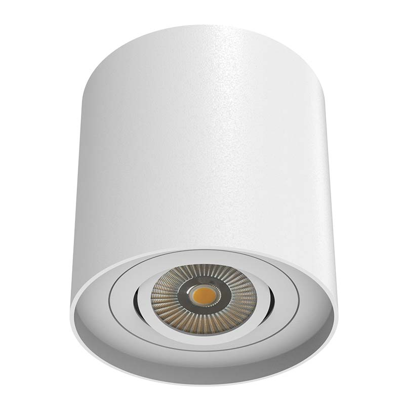 Surface Mounted Round Shape LED Downlight With 1 lamp
